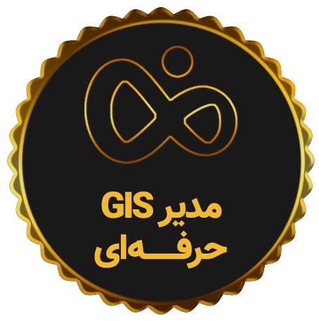 مدیر GIS حرفه ای