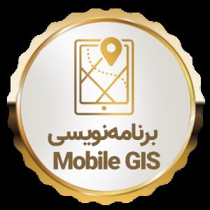 دوره یکساله برنامه نویس GIS حرفه ای